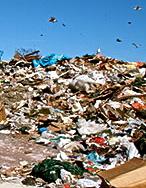 landfill 23842343461