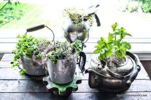08-unique herb garden in old kettles-0608