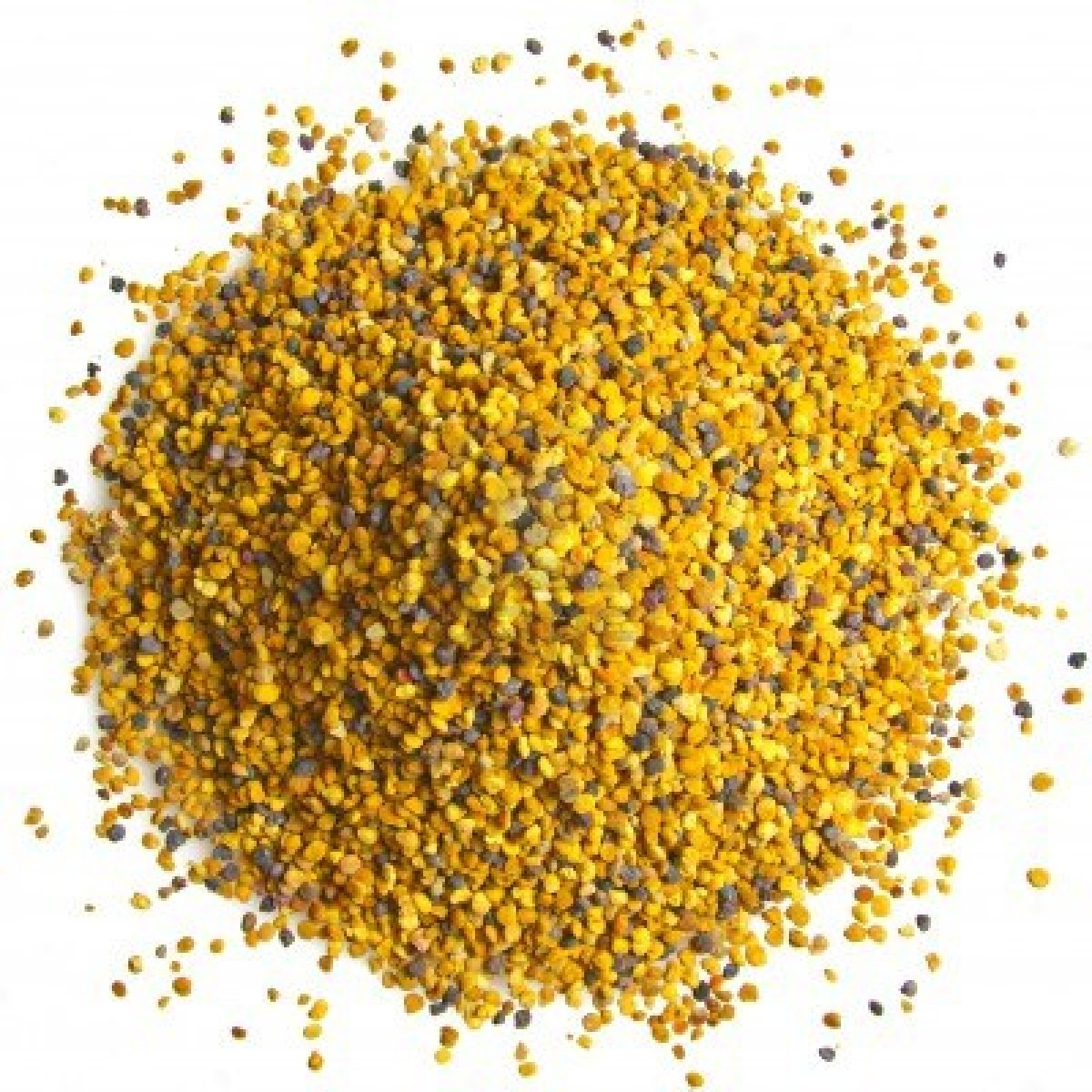 10875322 bee pollen on a white background
