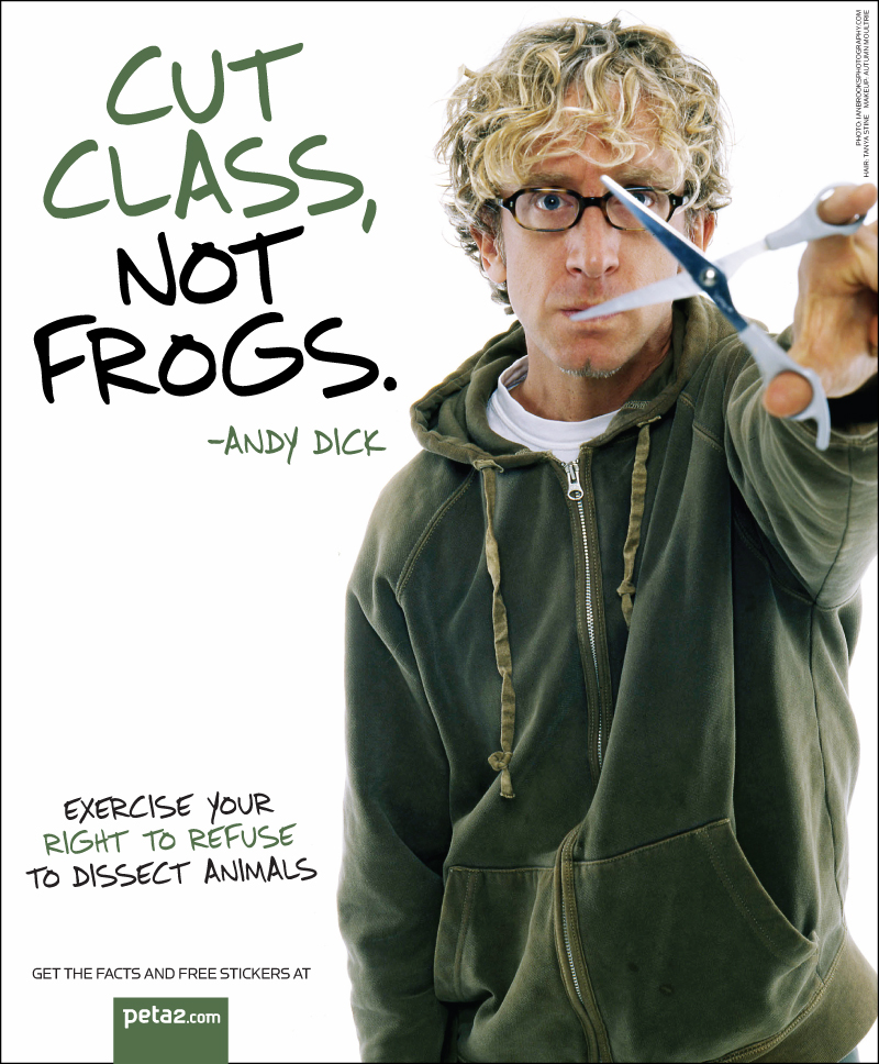 andy dick frogs