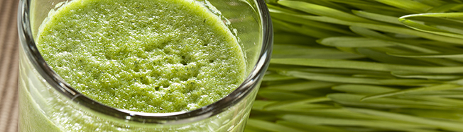 blog wheatgrass