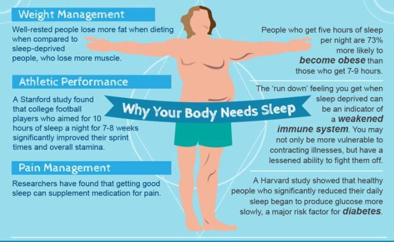 Why Your Body Needs Sleep graph
